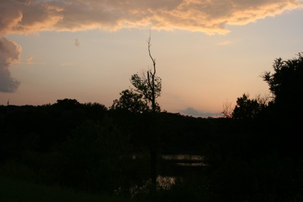 Sunset at Gator Pond.jpg